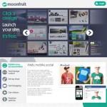 MoonFruit, crear sitios web
